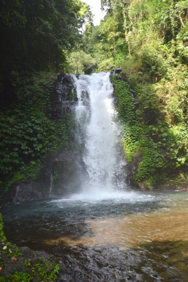 Maracujabluete-Reiseblog-Bali-Reisebericht-Gitgit-wasserfall-3