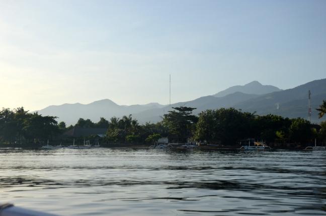 Maracujabluete-Reiseblog-Bali-Reisebericht-Lovina-Delfine-4