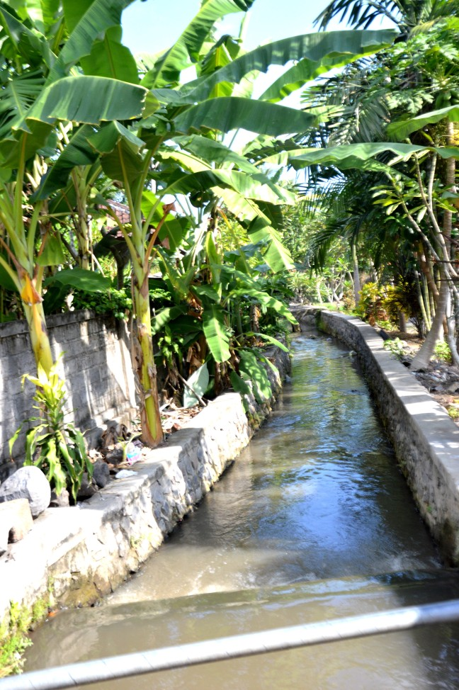 Maracujabluete-Reiseblog-Bali-Reisebericht-Tradition-5