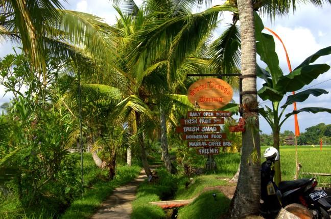 Maracujabluete-Reiseblog-Reisebericht-Bali-Ubud-Reisterrassen-Reisfelder-10