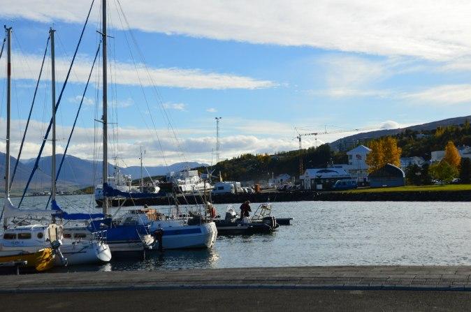 maracujabluete-travelblog-reiseblog-reisebericht-island-akureyri-8