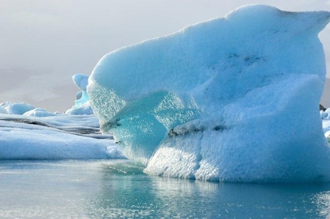maracujabluete-travelblog-reiseblog-reisebericht-island-jokursarlon-gletscherlagune-12