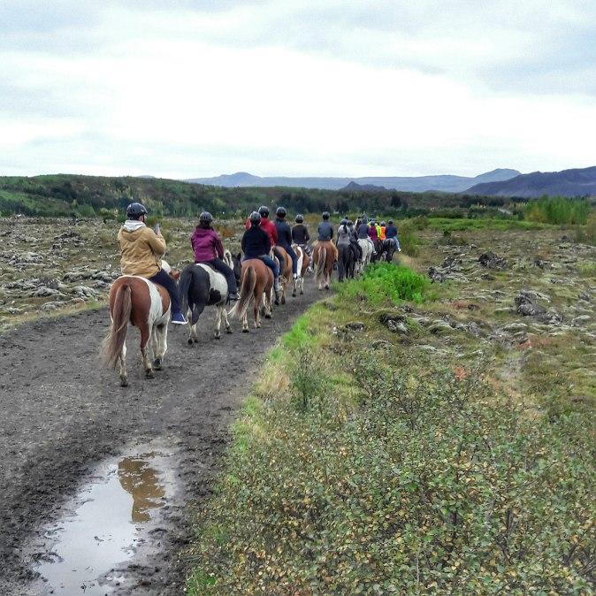 maracujabluete-travelblog-reiseblog-reisebericht-island-reykjavic-166t