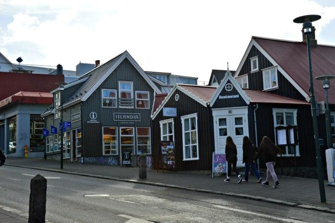 maracujabluete-travelblog-reiseblog-reisebericht-island-reykjavic-33