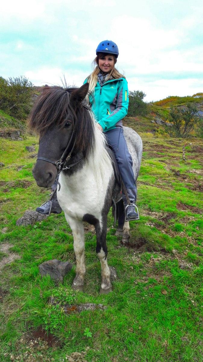 maracujabluete-travelblog-reiseblog-reisebericht-island-reykjavic-774