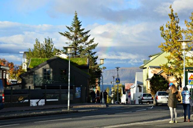 maracujabluete-travelblog-reiseblog-reisebericht-island-reykjavic-8