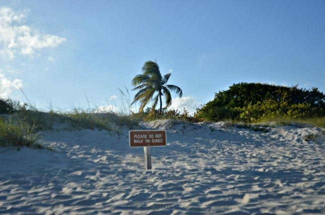 Maracujabluete-Reiseblog-Travelblogger-Reisetipps-Miami-staedtetrip-south-beach-28