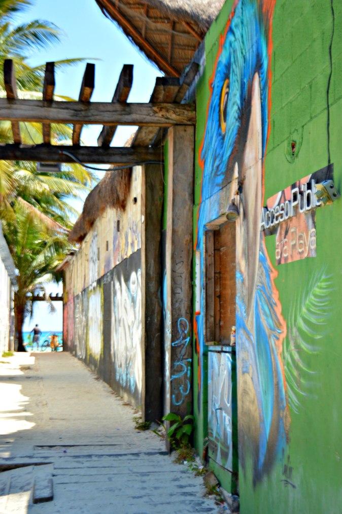 Maracujabluete-Travelblog-Reiseblog-Mainz-Reisetipps-Mexico-Playa-del-carmen-13