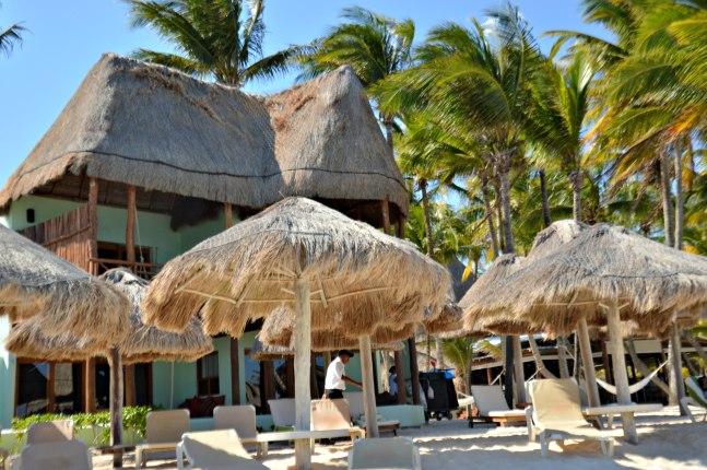 Maracujabluete-Travelblog-Reiseblog-Mainz-Reisetipps-Mexico-Playa-del-carmen-23