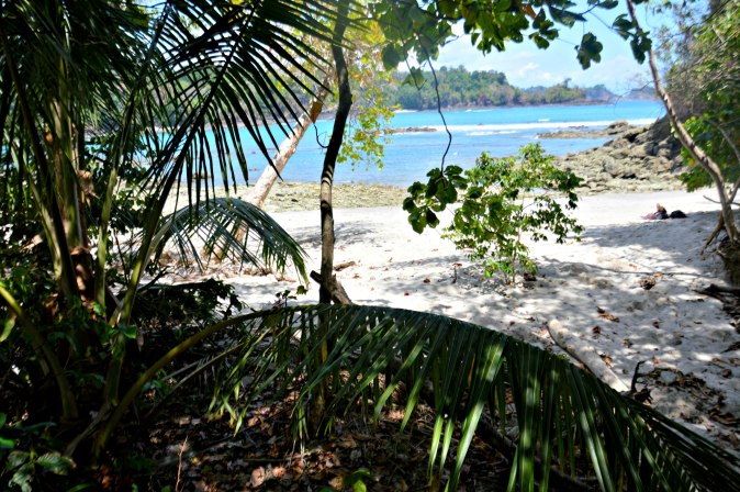 Maracujabluete-Reiseblog-Travelblogger-Reisetipps-Costa-Rica-Roadtrip-33
