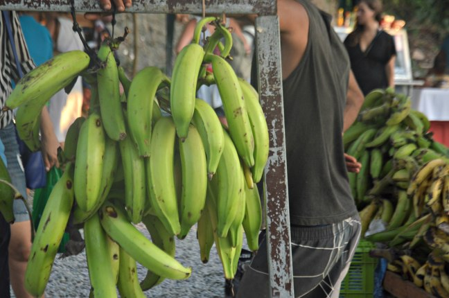 Maracujabluete-Reiseblog-Travelblogger-Reisetipps-Costa-Rica-Roadtrip-38