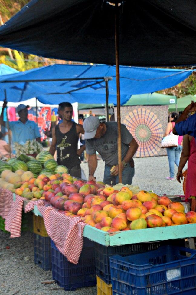Maracujabluete-Reiseblog-Travelblogger-Reisetipps-Costa-Rica-Roadtrip-39