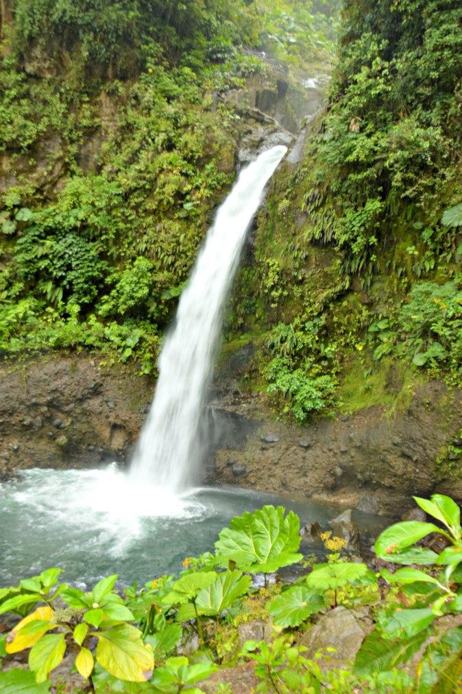 Maracujabluete-Reiseblog-Travelblogger-Reisetipps-Costa-Rica-Roadtrip-44