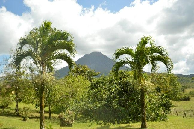 Maracujabluete-Reiseblog-Travelblogger-Reisetipps-Costa-Rica-Roadtrip-48