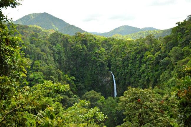 Maracujabluete-Reiseblog-Travelblogger-Reisetipps-Costa-Rica-Roadtrip-49
