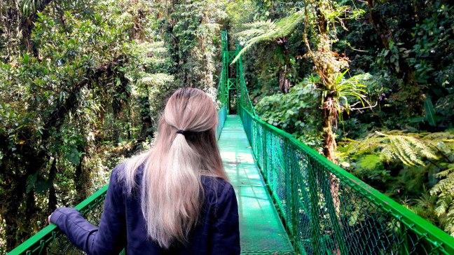 Maracujabluete-Reiseblog-Travelblogger-Reisetipps-Costa-Rica-Roadtrip-Hanging-Bridges-Cloudforest-Monteverde