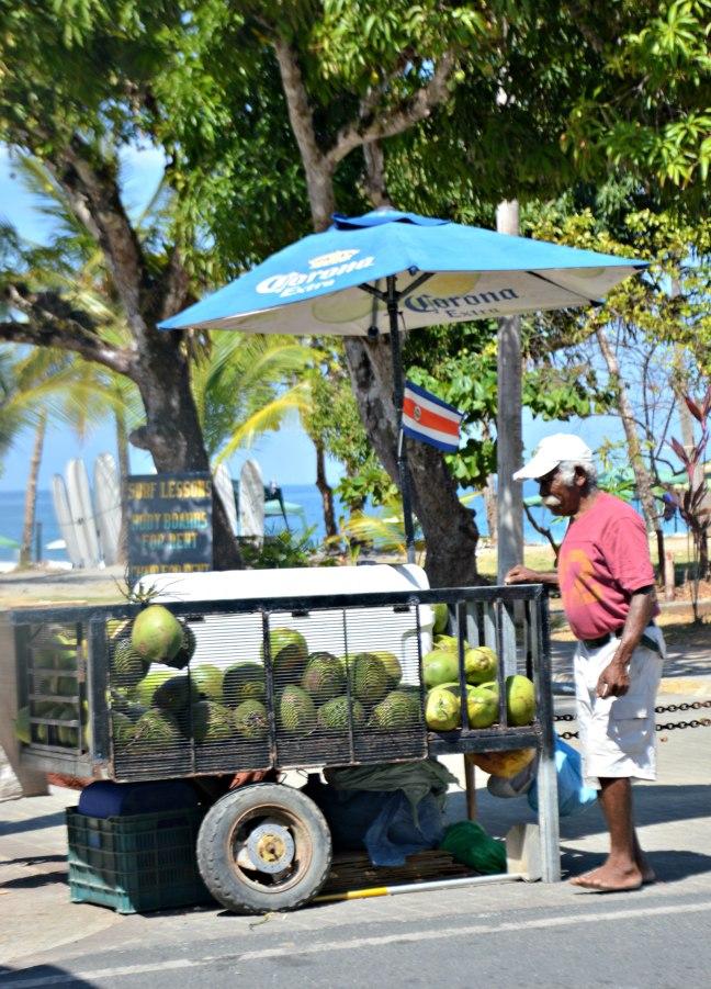 Maracujabluete-Reiseblog-Travelblogger-Reisetipps-Costa-Rica-Roadtrip-Manuel-Antonio-NP