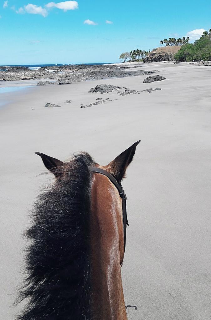 Maracujabluete-Reiseblog-Travelblogger-Reisetipps-Costa-Rica-Roadtrip-Riding-Ausritt-Strand