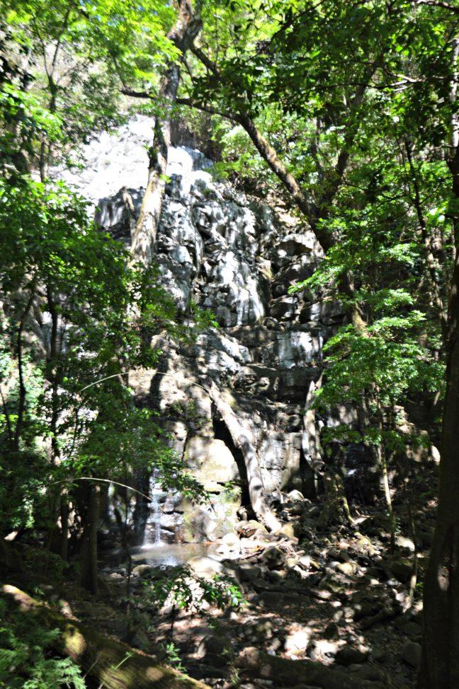 Maracujabluete-Reiseblog-Travelblogger-Reisetipps-Costa-Rica-Roadtrip-Rincon-de-la-vieja-nationalpark-2