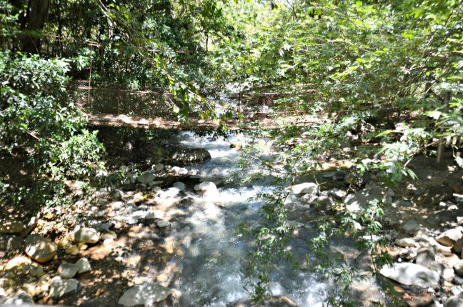 Maracujabluete-Reiseblog-Travelblogger-Reisetipps-Costa-Rica-Roadtrip-Rincon-de-la-vieja-nationalpark
