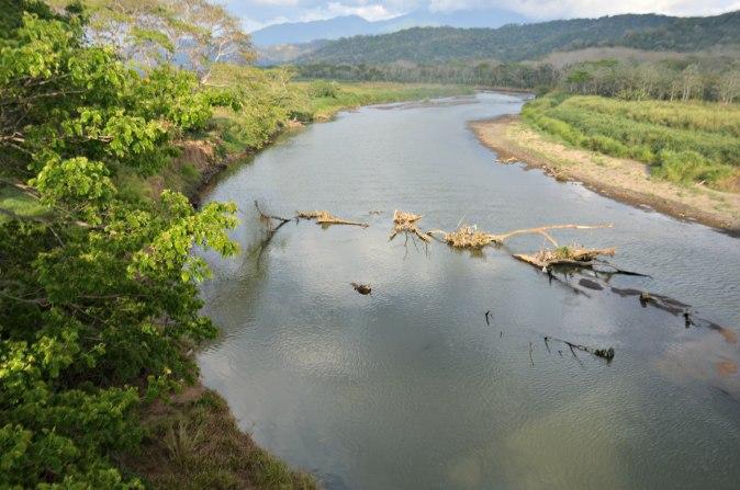 Maracujabluete-Reiseblog-Travelblogger-Reisetipps-Costa-Rica-Roadtrip-Tarcoles-Krokodile-1