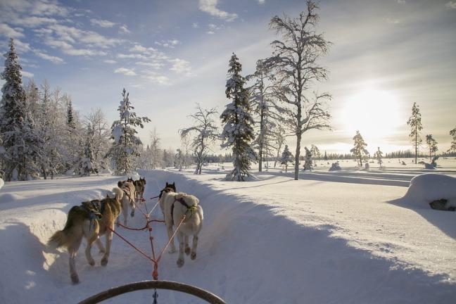 Maracujabluete-Travelblog-Lappland-Bucket-List-3