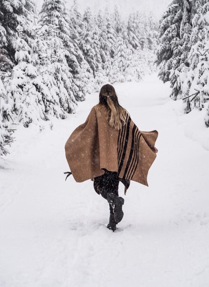 maracujabluete-reisen-reiseblog-frankfurt-reisetipps-harz-nationalpark-brocken-winter-18.jpeg