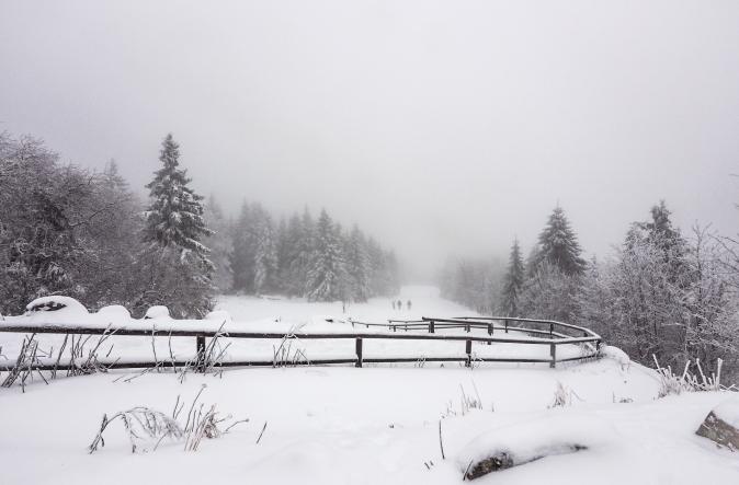 maracujabluete-reisen-reiseblog-frankfurt-reisetipps-harz-nationalpark-torfhaus-harzresort-4.jpeg