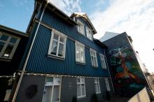 Reykjavik Arts 2
