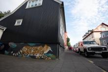 Reykjavik Arts